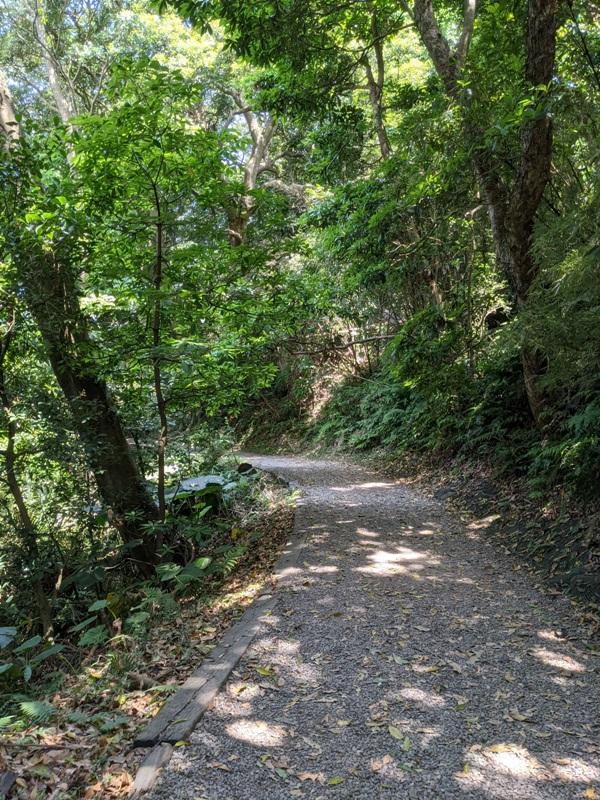 tienmutrail18 士林-天母親山古道(水管道) 無緣的翠峰瀑布