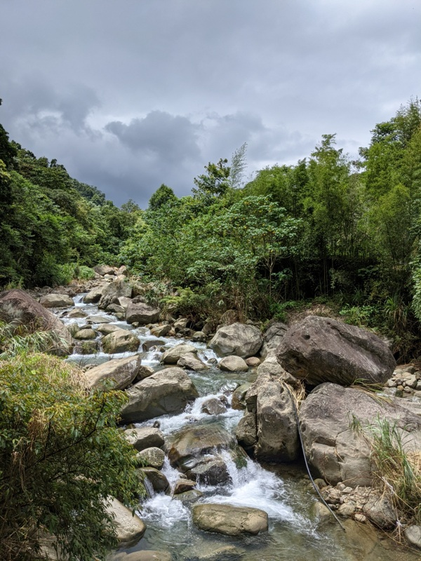 42feng04 南庄-四十二份湧泉自然生態步道 清爽宜人小秘境