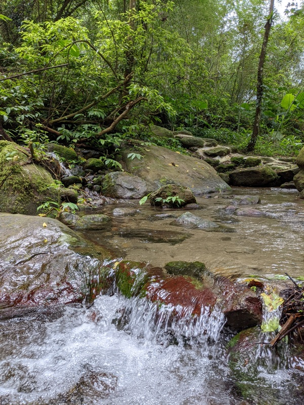 42feng07 南庄-四十二份湧泉自然生態步道 清爽宜人小秘境