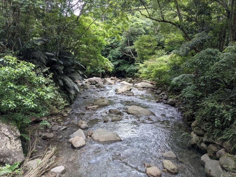 42feng14 南庄-四十二份湧泉自然生態步道 清爽宜人小秘境